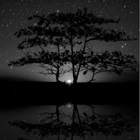 by Giada Reccardini - Landscapes Starscapes ( pwcstars, pwcreflections )