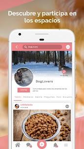Midoog – La app de tu mascota 4