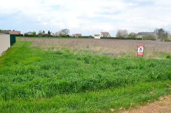 terrain à Bouzonville-aux-Bois (45)