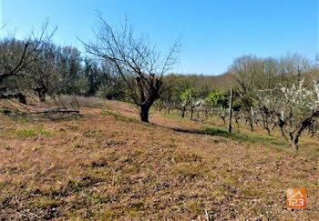 terrain à La Chapelle-Hermier (85)