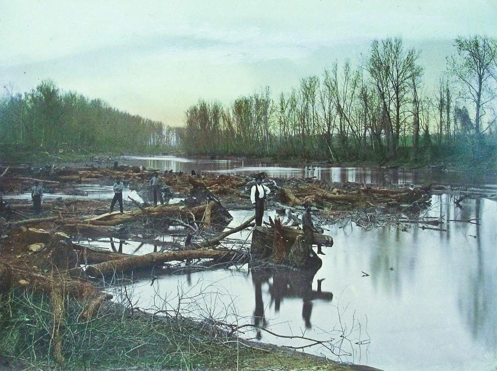 Great Raft, a Grande Jangada do rio Vermelho