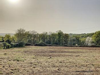 terrain à Arzacq-Arraziguet (64)