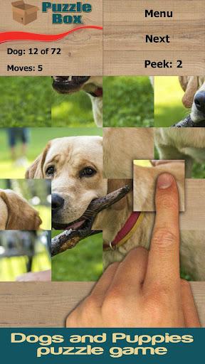 개 강아지 : 퍼즐 상자