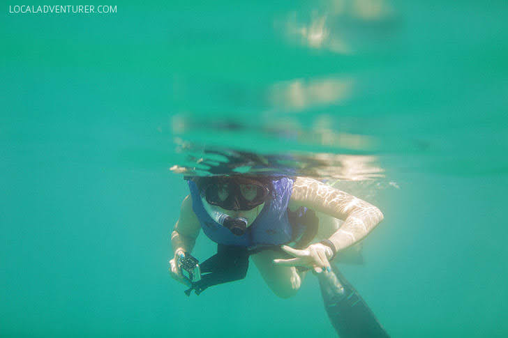 Snorkeling off Santa Maria Beach Cabo.