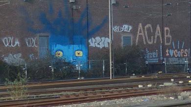Photo: BLUE HEADS; COPS et al.
