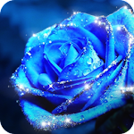 Blue Rose Theme – AppLock Icon