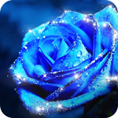 Blue Rose Theme – AppLock