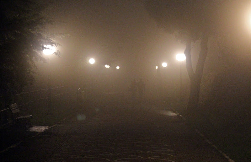 nella nebbia di dodina77