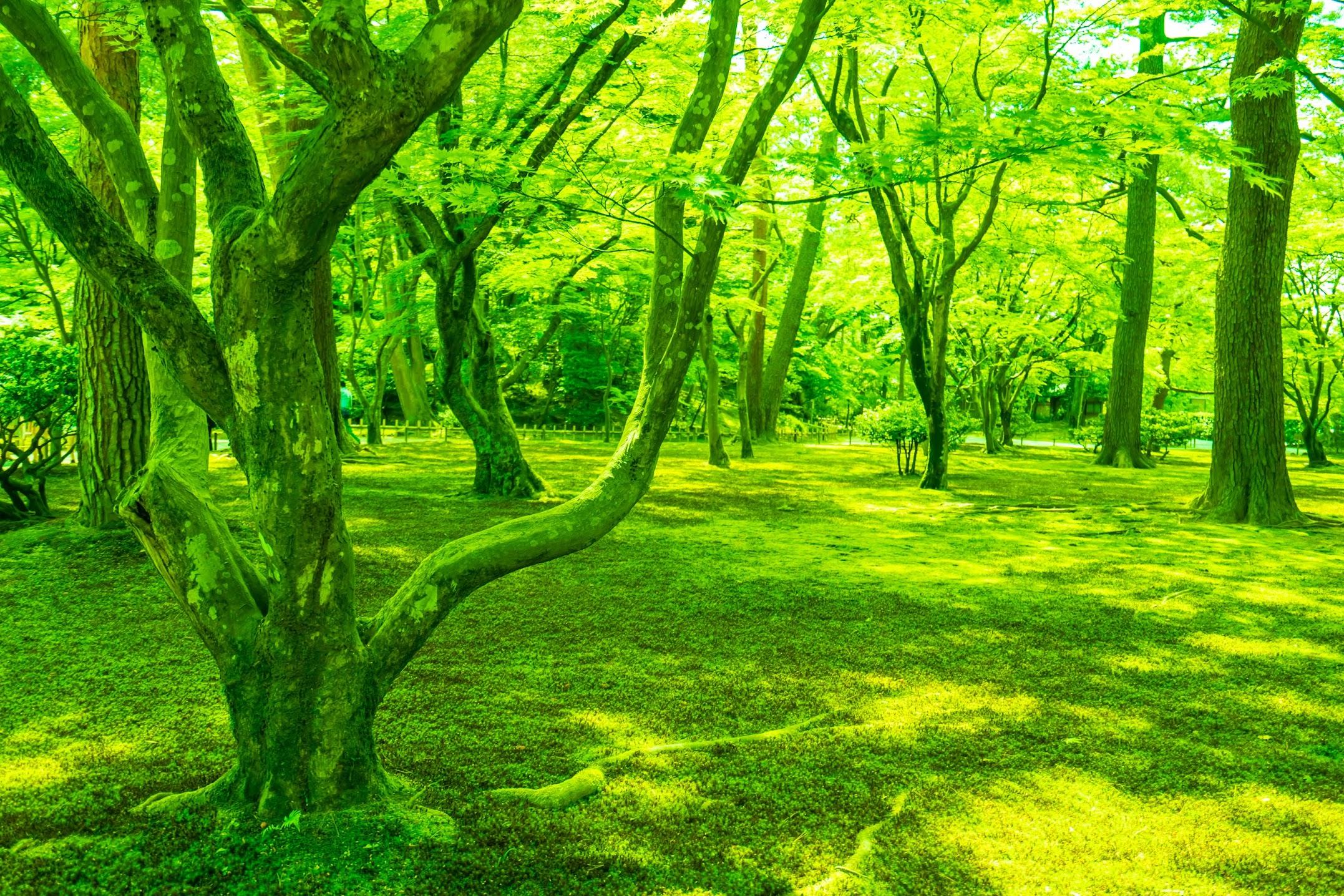 Kenrokuen Garden Sekirei-jima2