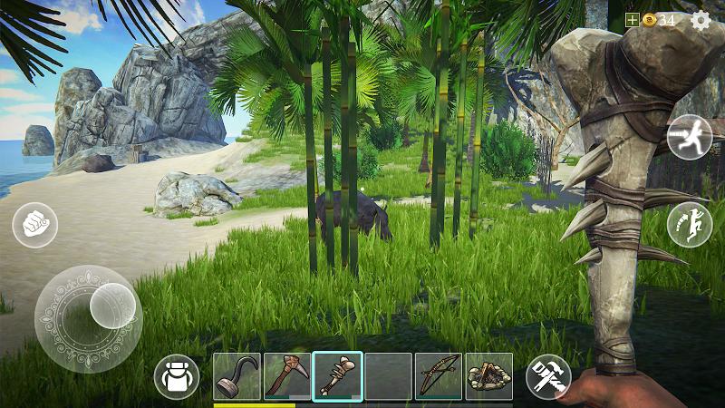 Last Pirate: Survival Island Screenshot 4