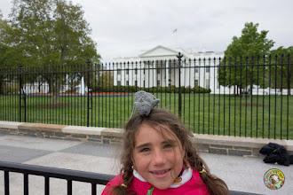 Photo: Ratatouille à la Maison Blanche