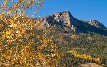 Photo: Deer Mountain shimmering.