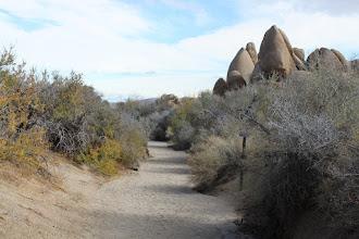 Photo: The trail goes through a wash