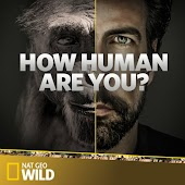 How Human Are You?