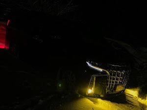 アルファード AYH30Wのカスタム事例画像 Rikuさんの2020年02月05日18:24の投稿