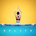 Splits in 30 Days - Stretching Exercises icon