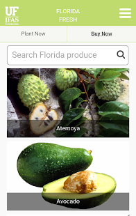 Florida Fresh- screenshot thumbnail