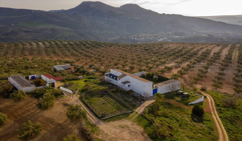 Maison avec terrasse Loja