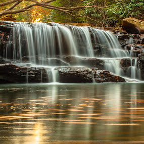 Swirl by Kevin Frick - Landscapes Waterscapes ( autumn, west virginia, swirl, waterfall, reflections, leaves )