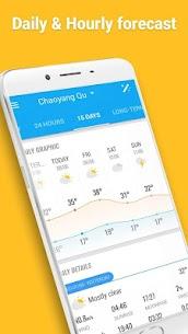 Amber Weather (Premium): Pronóstico del tiempo en ámbar 3
