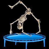 Skeleton Ragdoll, Trampoline