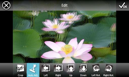 3DSteroid Pro 4.01 (MOD + APK) Download 3