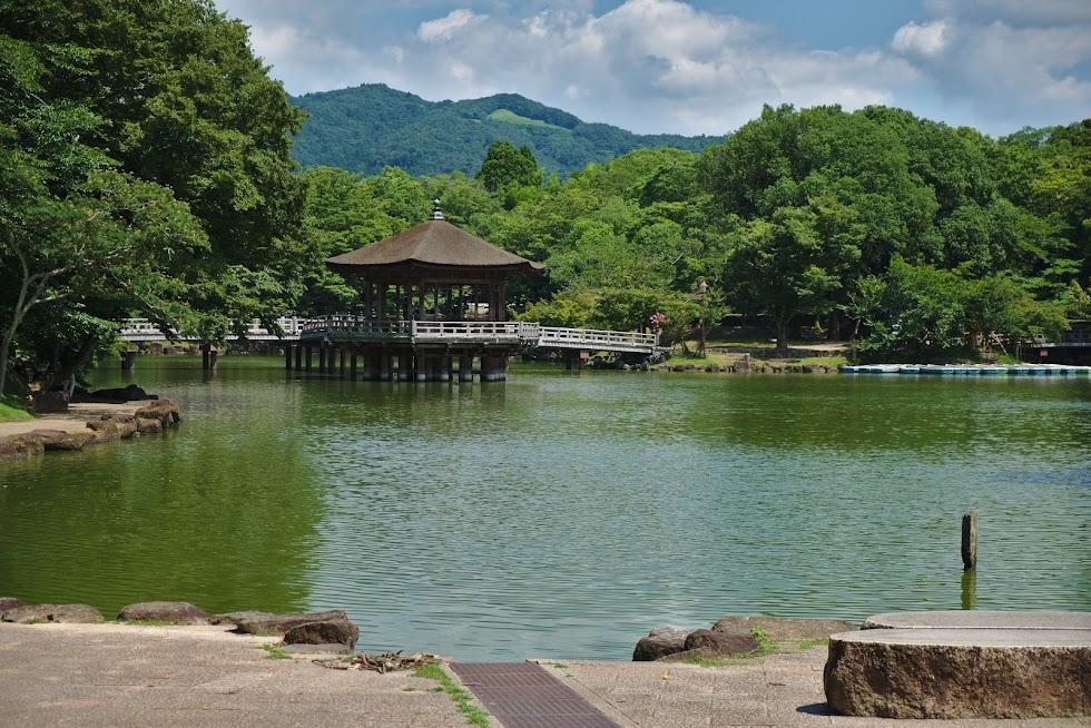 Park w Narze