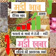 Apni Mandi Daily bhav