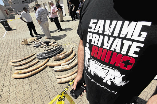 Searle Derman of Saving Private Rhino with a stash of tusks and horns found in a raid on a home in Table View, Cape Town, yesterday. Police arrested two men Picture: ESA ALEXANDER