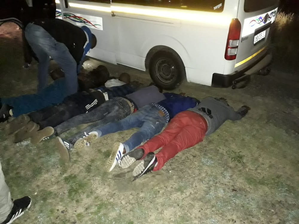 Cops find 27 sheep and four men crammed into a Quantum taxi - SowetanLIVE