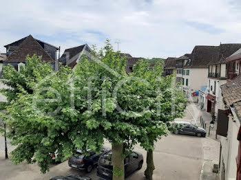 locaux professionels à Salies-de-bearn (64)
