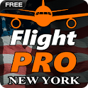 Pro Flight Simulator NY Free icon