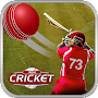 Play Cricket Matches APK icon