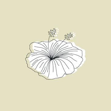 Simple Petunia - Instagram Highlight template
