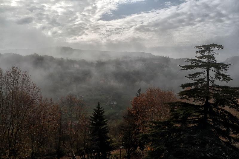Fog di romano