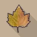Creative Woodturner AR icon