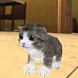 Kitten Cat .. file APK for Gaming PC/PS3/PS4 Smart TV
