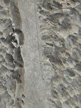 Photo: SKEWED---detail