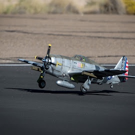 P-47 Landing by Fred Prince - Transportation Airplanes ( p-47, landing, three-point, maloof, albuquerque, nm )