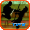 Tips:Shadow Fight 2 icon