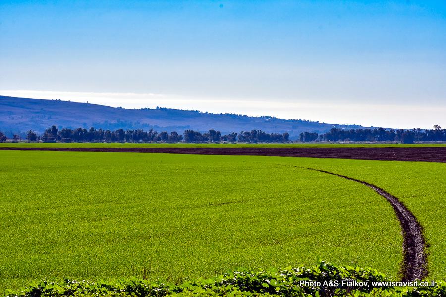 Долина Хулы, Израиль.