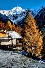 """Photo: I colori ell'autunno al """"Casun"""""""