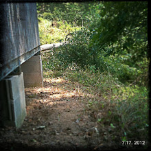 Photo: Clearing a path around my studio.