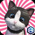 Daily Kitten 데일리키튼 귀여운 아기 고양이 icon