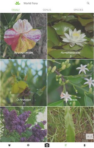 PlantNet Plant Identification 3.0.7 screenshots 11