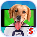 Face scanner: What Doggy icon