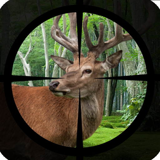 Deer Hunting - Expert Shooting 3D file APK for Gaming PC/PS3/PS4 Smart TV