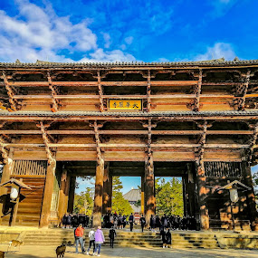 Temple in Nara by Jurich Bitco - Buildings & Architecture Public & Historical ( japan, historical, temple )