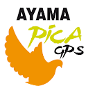 Ayama Pointer Pica icon