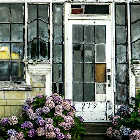 Faded Beauty by Marie Browning - Buildings & Architecture Architectural Detail (  )